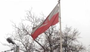 Polonya'da yoğun tartışmalara rağmen kürtaj yasağı yürürlüğe girecek