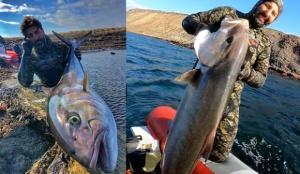 Rekortmen dalgıç, 1,5 metre boyunda ve 27 kilo ağırlığında akya avladı