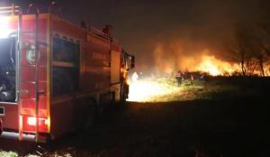 Samsun'da orman ve sazlıkta korkutan yangınlar!