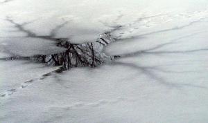 Donmuş gölde buzun kırılması sonucu suya düşen 4 kişi boğuldu