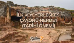 İlk köy yerleşimi Çayönü nerededir? Çayönü tarihi önemi…