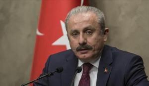"""TBMM Başkanı Şentop: """"PKK'ya ve bütün iş birlikçilerine binlerce kez lanet"""""""