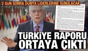 2 gün sonra dünya liderlerine sunulacak Türkiye raporu ortaya çıktı