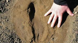 Beş bin yıllık olduğu ortaya çıktı: Yerlerini gizli ve saklı tutuyorlar