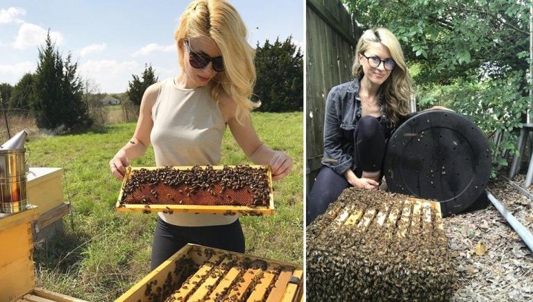 Koruyucu Hiçbir Kıyafet Giymeden Arıları Taşıyan Yürek Yemiş Kadın: Erika Thompson