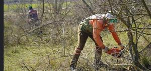Lüleburgaz Kent Ormanı'nda hummalı çalışma