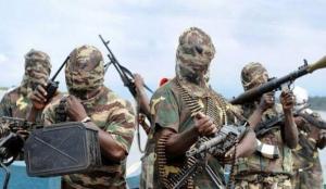 Nijerya'da terör örgütü Boko Haram'ın 41 üyesi öldürüldü