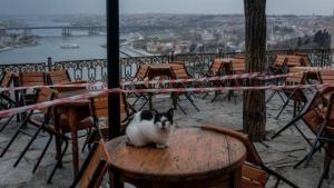 Prof. Dr. Serap Şimşek Yavuz: 'İstanbul'da Kapalı Mekanlarda Maskesiz Oturmak İçin Çok Erken'