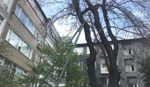 134 yıllık erguvan ağacını kesilmekten mahalle sakinleri kurtardı