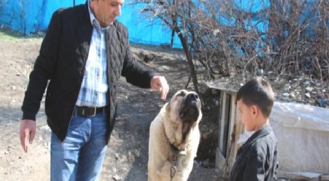 Böyle Bir Şey Olabilir mi? Erzurum'da Bir Vatandaş Köpeğinin Dile Gelip 'Benim Adım Ejder' Dediğini İddia Etti
