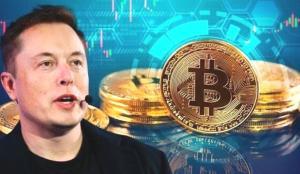 Elon Musk'ı izleyeceğim derken avlandılar! 10 milyon dolar buhar oldu