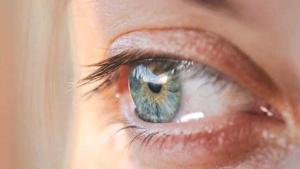 Göz sağlığı için en iyi 10 besin