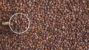Kahve yatırımcısına kazandırdı