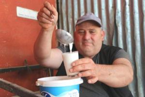 Korona Salgını Deve Sütü Patlamasına Neden Oldu: Talep Yüzde 150 Arttı