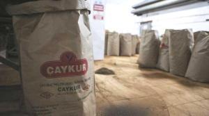 CHP'den ÇAYKUR Raporu: AKP Döneminde Zarar Yüzde 1.217 Arttı