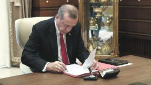 Son dakika! Erdoğan'ın onayına gitti! Artık mal değil can olacaklar
