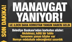 Manavgat'ta büyük yangın! Korkutan haberleş peş peşe: Kayseri, Adana ve Hatay'da da yangın çıktı