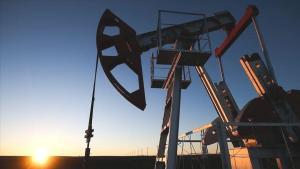 OPEC+ grubu 18. Bakanlar Toplantısı'nı iptal etti