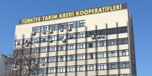 Tarım Kredi Koop. Samsun ve Trabzon Böl. Müdürlükleri 26 personel alacak