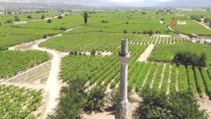 Üzüm bağlarının içindeki kırık minare zamana direniyor