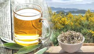 Ada çayı faydaları nelerdir? Ada çayı nasıl demlenir? Ada çayı zararları…