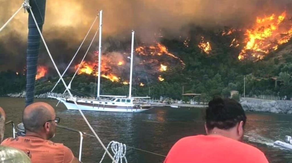 Çökertme Koyu'nu küle çeviren yangını Deli Mehmet rüzgarı körükledi! Tüm turizm tesisleri ve plajları kapatıldı