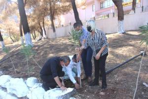 Marmaris'te yangından zarar gören okulun bahçesine fidan dikildi