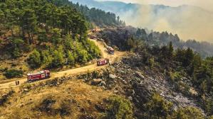 Son Dakika: Antalya'nın Manavgat ve Gündoğmuş ilçelerindeki yangınlar 10 gün sonra kontrol altına alındı