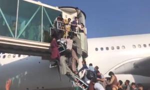 Son Dakika! Kabil Havalimanı'nda çıkan izdihamda 17 kişi yaralandı