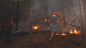 Türkiye dakika dakika takip ediyor! İşte yangınlarda son durum