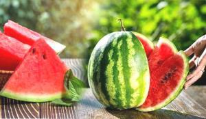 Yaz aylarının vitamin deposu meyvesi: Karpuz! Faydaları saymakla bitmiyor