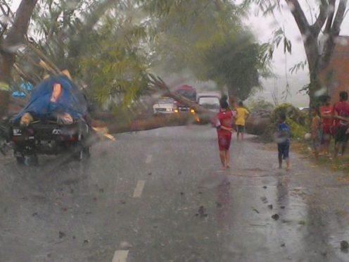 Pohon tumbang yang sempat menghalangi jalan di Desa Tambe Kecamatan Bolo.