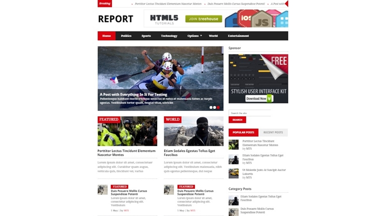 Report wordpress theme