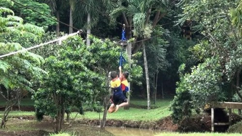 Bermain Flying Fox