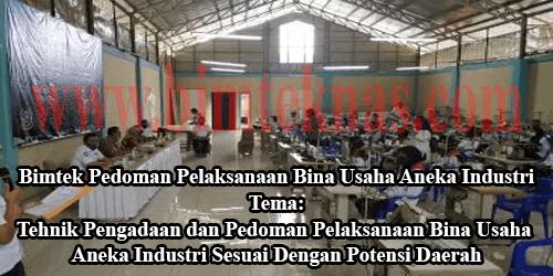 Bimtek Pedoman Pelaksanaan Bina Usaha Aneka Industri