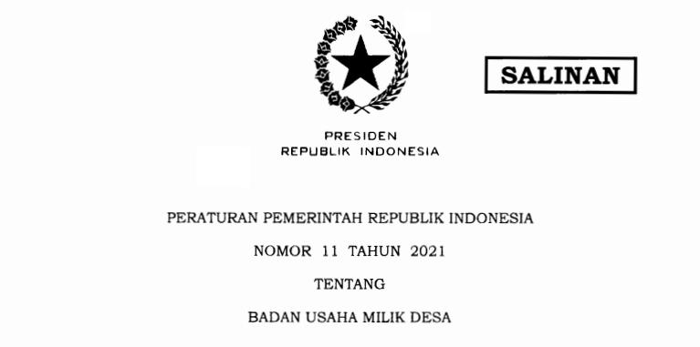 Bimtek Bumdes Sesuai PP No 11 Tahun 2021