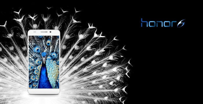 Honor 6 Phone Review