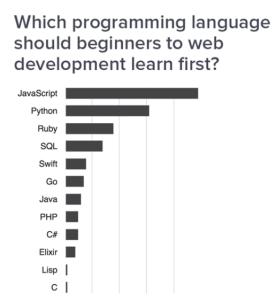 rating-of-programming-languages-for-web-development-binarymove