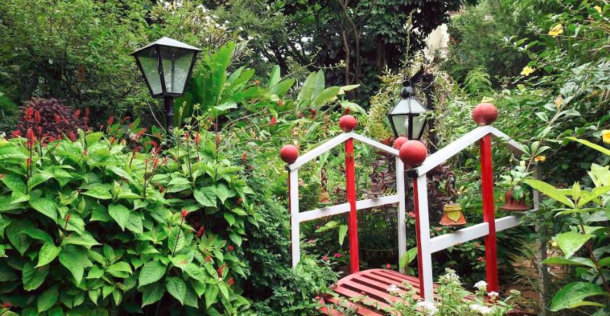 Bridge in the garden