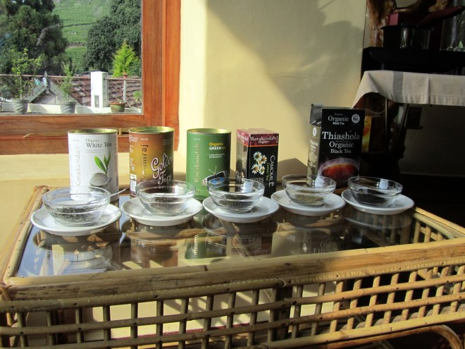 Tea tasting at Tea Nest