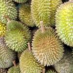 Durian - Image Credit Pixabay