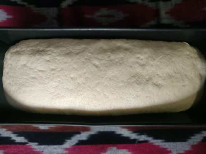 Step 6: the risen dough has covered the entire mold