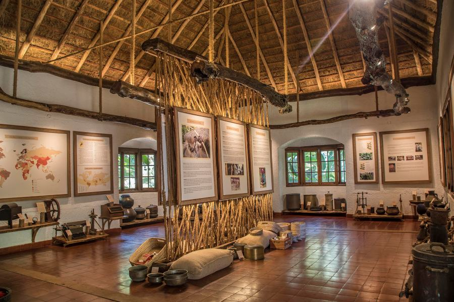 Coffee Museum at Evolve Back Coorg