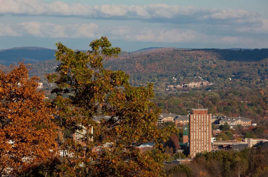 Fall Day Daily Photo Nov 24 2010 Binghamton University