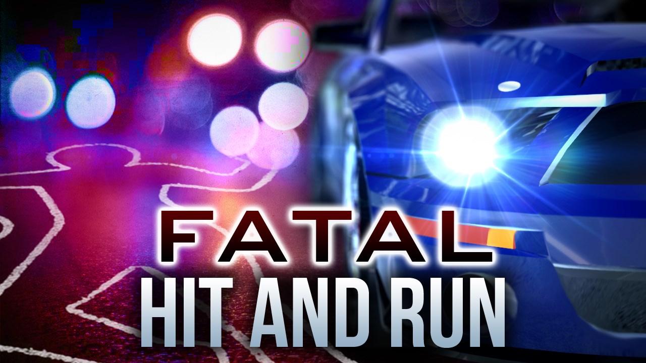 Fatal Hit and Run_1460535164867-118809198.jpg
