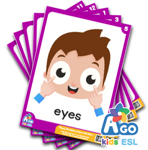 Head Shoulders Knees And Moo - ESL Educational Flashcard Packs