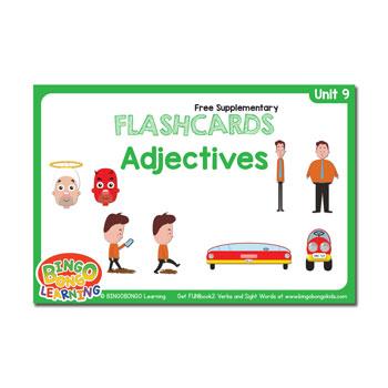 Unit 9 flashcards adjectives