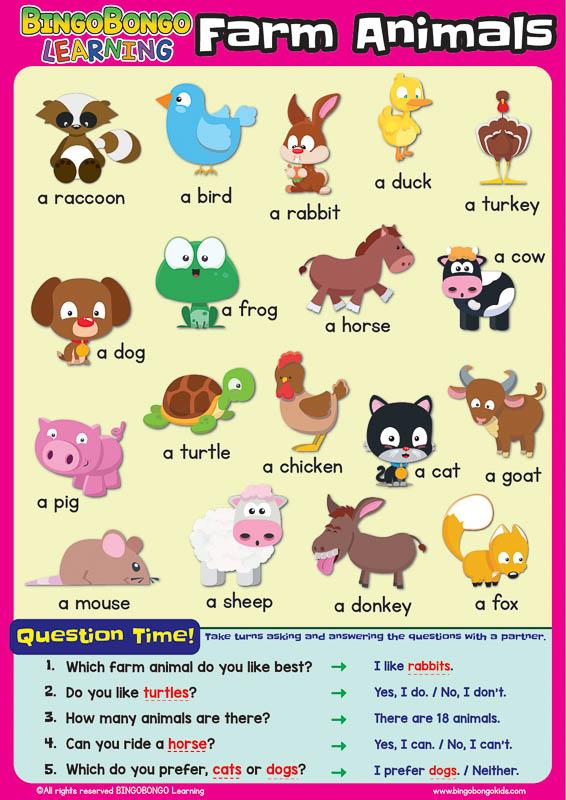 bingobongo classroom poster farm animals