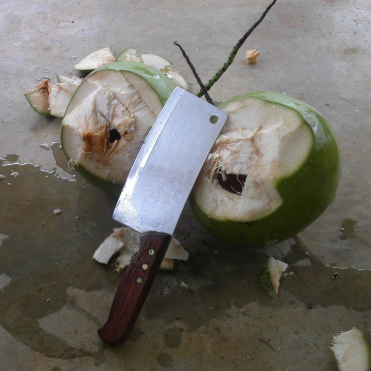 Coconut cleaver