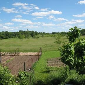 Three Roods Farm